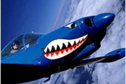 Rich Perkins, Marchetti SF.260, Mako Shark
